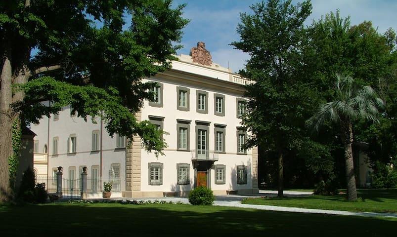 PISA Residence Villa Del Lupo A