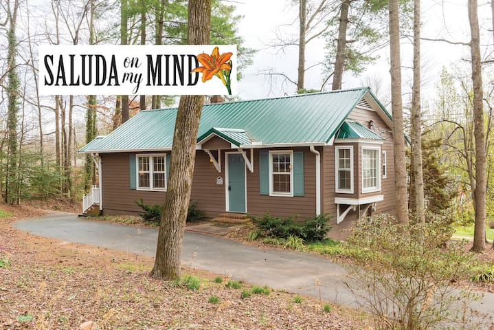 CHARMING Saluda on My Mind – 2min Walk to Downtown