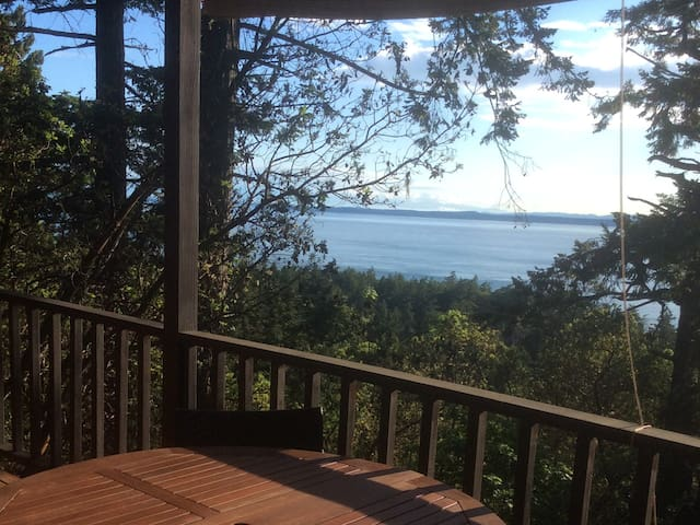 Watch the orcas in private cabin!  - Friday Harbor - Casa de campo