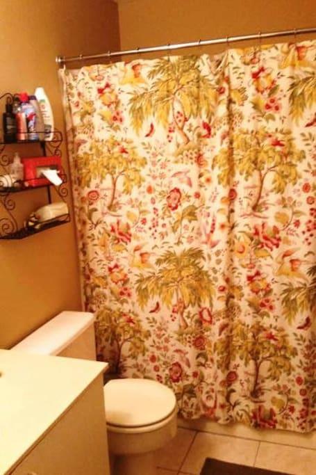 Ensuite bathroom with tub/shower