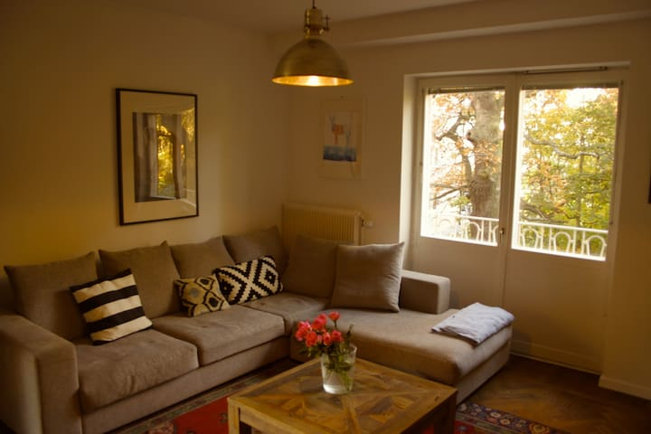 Living area (dining area not shown but open plan), overlooking oaks. This should be snow covered in Winter!