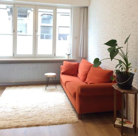 Charming vintage house Antwerp