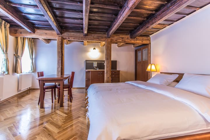Historical Studio with Wooden Beams and View - Prag - Wohnung