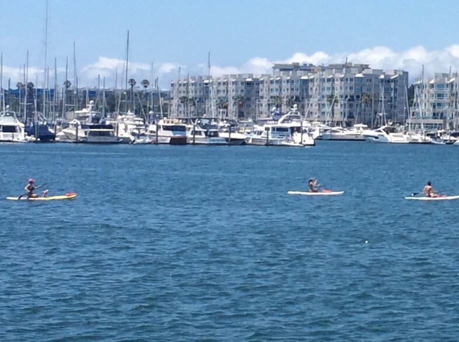 Walk to the marina!
