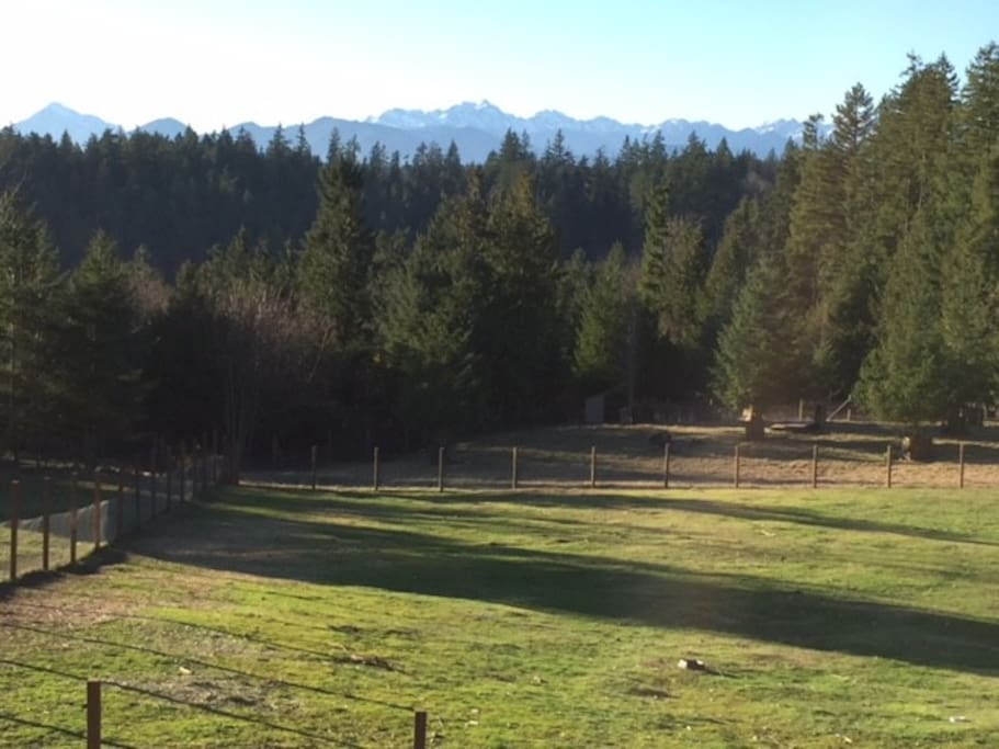 View from the Barn Apartment