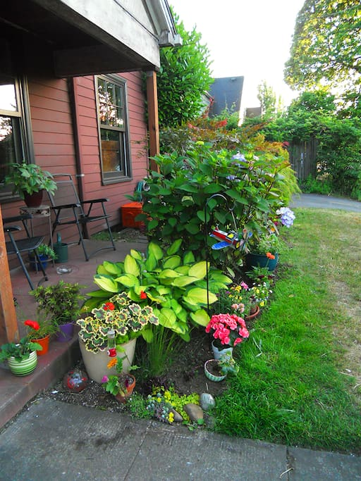 This is the front of the house; it is humble but private and filled with hummingbirds, blooming flowers and quirky yard art (made by me, of course!)