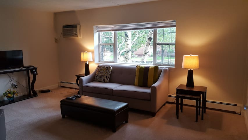 Quiet & comfortable near Boston and a Starbucks - 沃爾瑟姆(Waltham) - 公寓