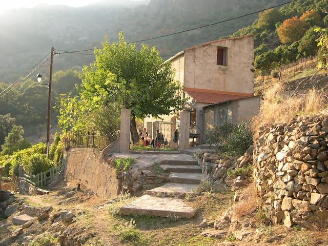 Maison avec jardin arboré / A Costa - Asco - Hus