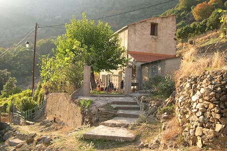 Maison avec jardin arboré / A Costa - Asco - Casa