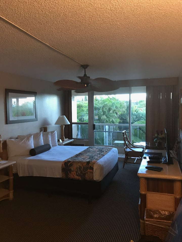 The Maui Banyon Condo