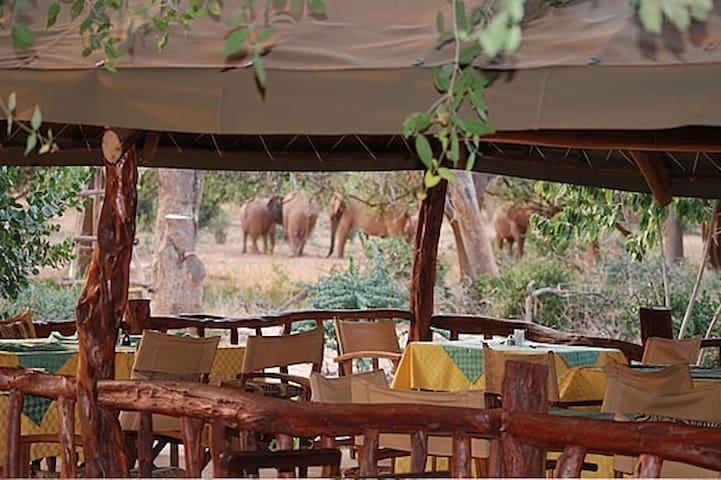 NDOLOLO SAFARI CAMP, (KENYA)