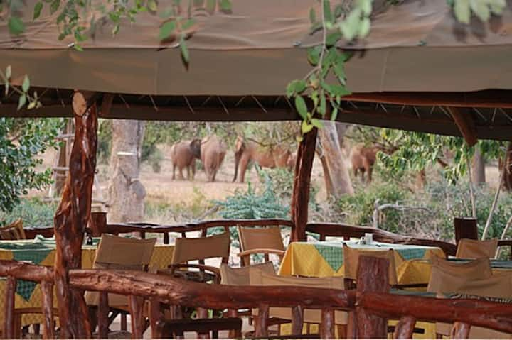 NDOLOLO SAFARI CAMP, (KENYA)
