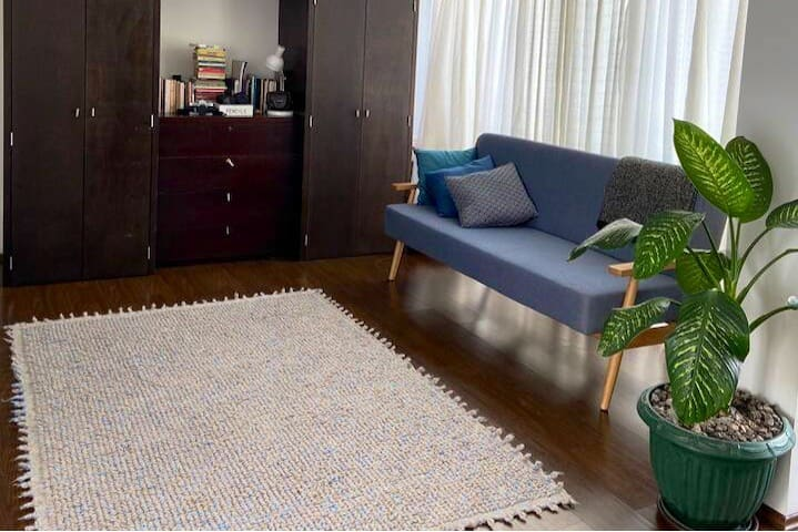 Beautiful Furnished studio near Condesa