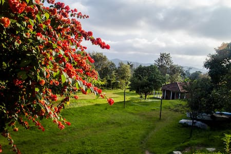 Thrilling Coorg @ the Adventure Camp - Bittangala - Bed & Breakfast