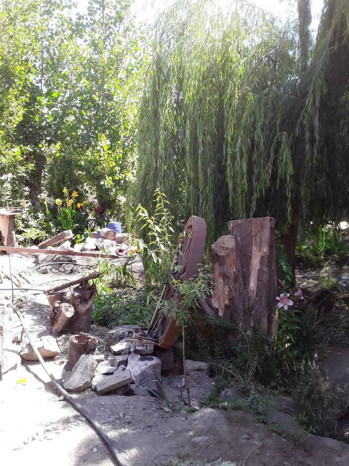 Camping cercano a ciudad, jardín, río, naturaleza.