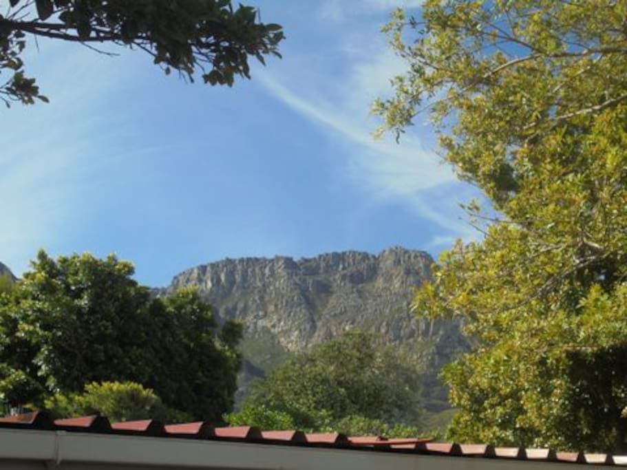 Table mountain at the back of our house