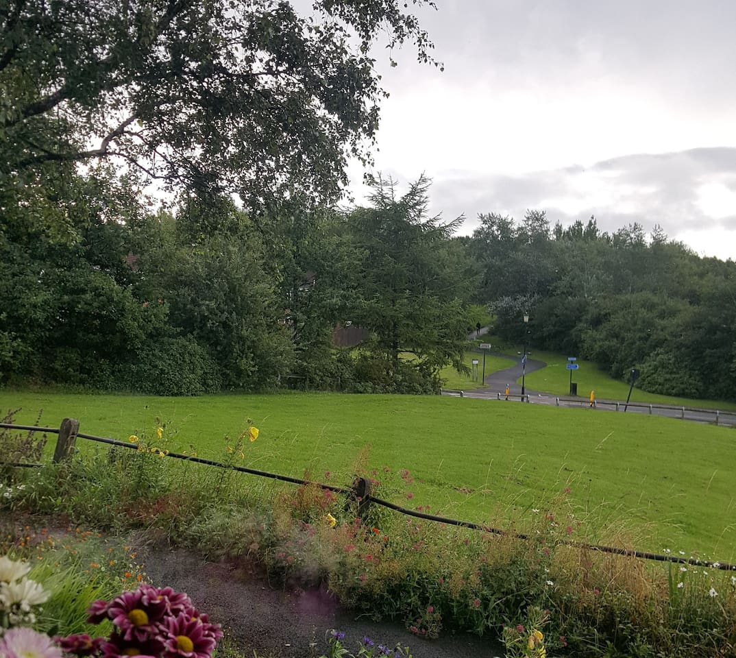 View from lounge window with Hadrians Walk/Cycle way