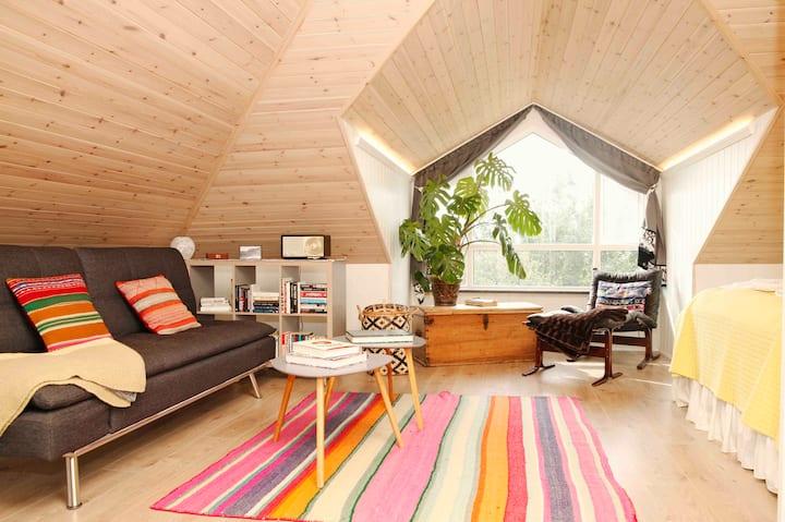 Frostastaðir - A new loft with spectacular view