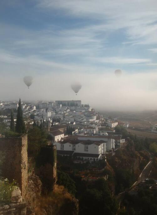 morning view from the Casita,  vista desde la Casita