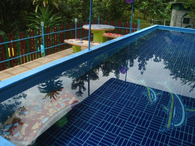 Jolly's Jungle-Apartment - Parrita - Pis
