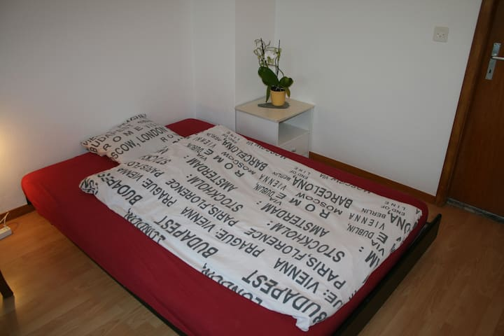 Big room with private toilet and walk-in wardrob - Ehrendingen - บ้าน