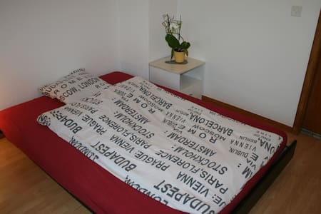 Big room with private toilet and walk-in wardrob - Ehrendingen - Rumah