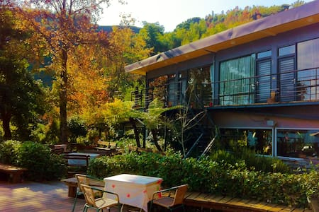 Alishan Lauya -Economical Double - Bed & Breakfast