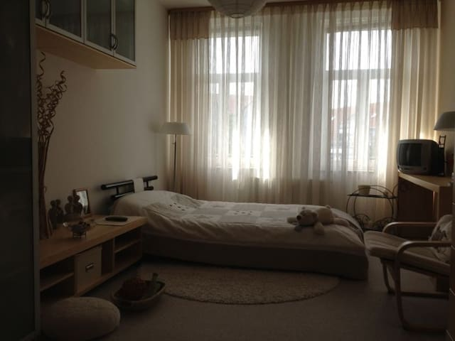 Lovely 1BR flat close to Center - Lipsk - Apartament