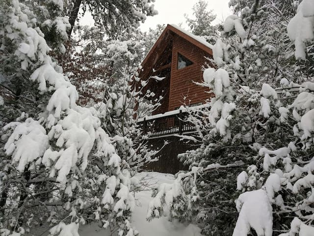 Blue Ridge Parkway cabin HotTub Walk to Waterfalls