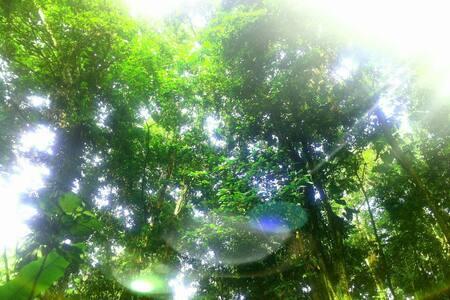 RESPIRE l'air frais de la campagne - ABYMES, Chazeau - Casa