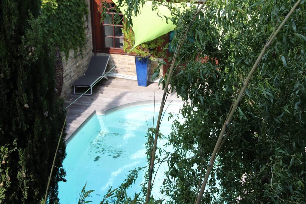 piscine dans un écrin de verdure
