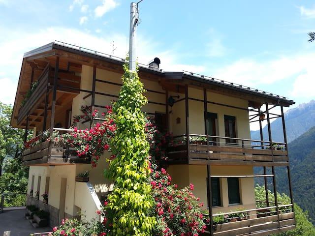 INDIMENTICABILE PANORAMA DOLOMITICO - Pieve di Cadore-Dolomiti