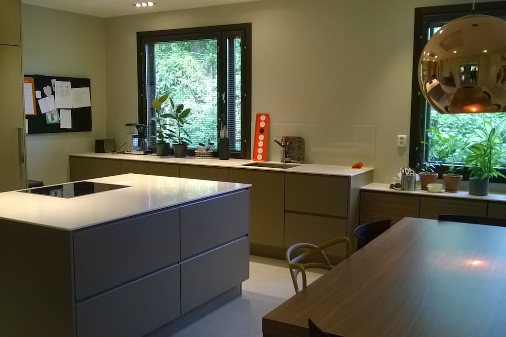 Large, fully integrated modern kitchen