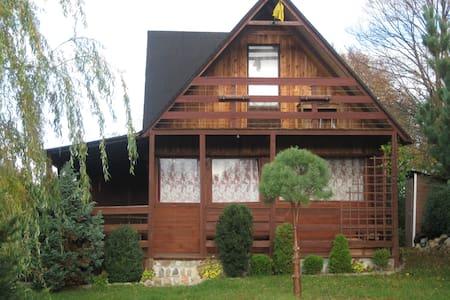 Domek drewniany z ogródkiem