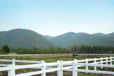 Land for lease to build resort home - Nakhon Ratchasima - Rumah Tanah