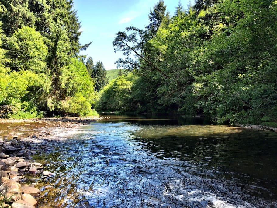North Fork Nehalem River is great for exploring in the summertime as the water is at its lowest .