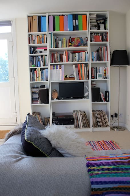 The sofa, bookshelves with wifi and televison