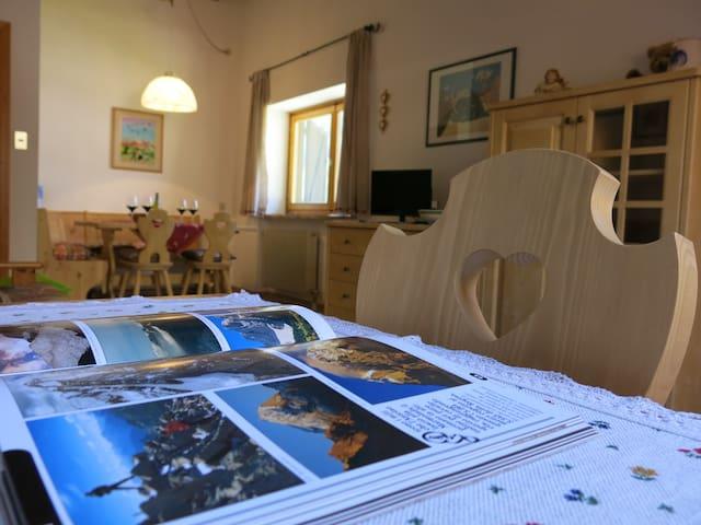 Apartment Principe Marmolada - Malga Ciapela - Appartement