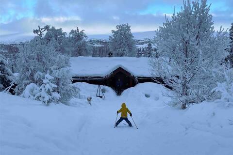 Koselig familiehytte, ca 2 - 2,5 timer fra Oslo