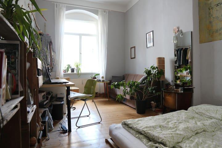 Lovely room in Dresden-Neustadt - Dresden - Daire