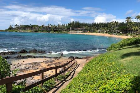 Aloha Beach Studio/Suite in Napili Shores *Views*
