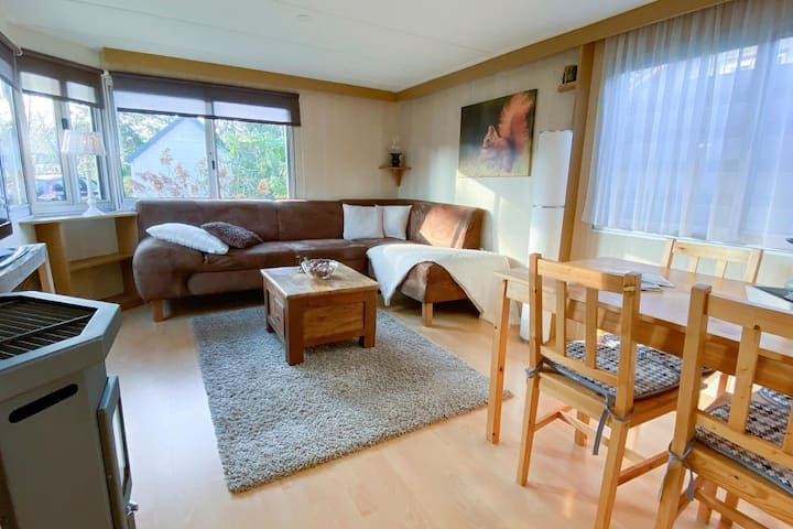 Inviting Holiday Home in Hulshorst with Garden