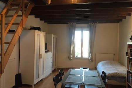 Sous louer loft/duplex, Bagneux - Bagneux - Loft