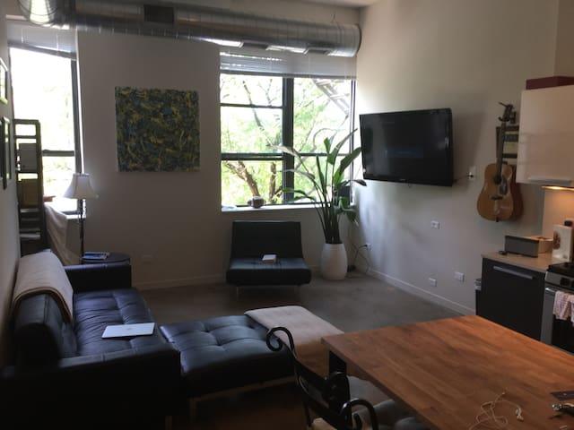 1 Bedroom In Heart Of West Loop Apartments For Rent In Chicago Illinois U