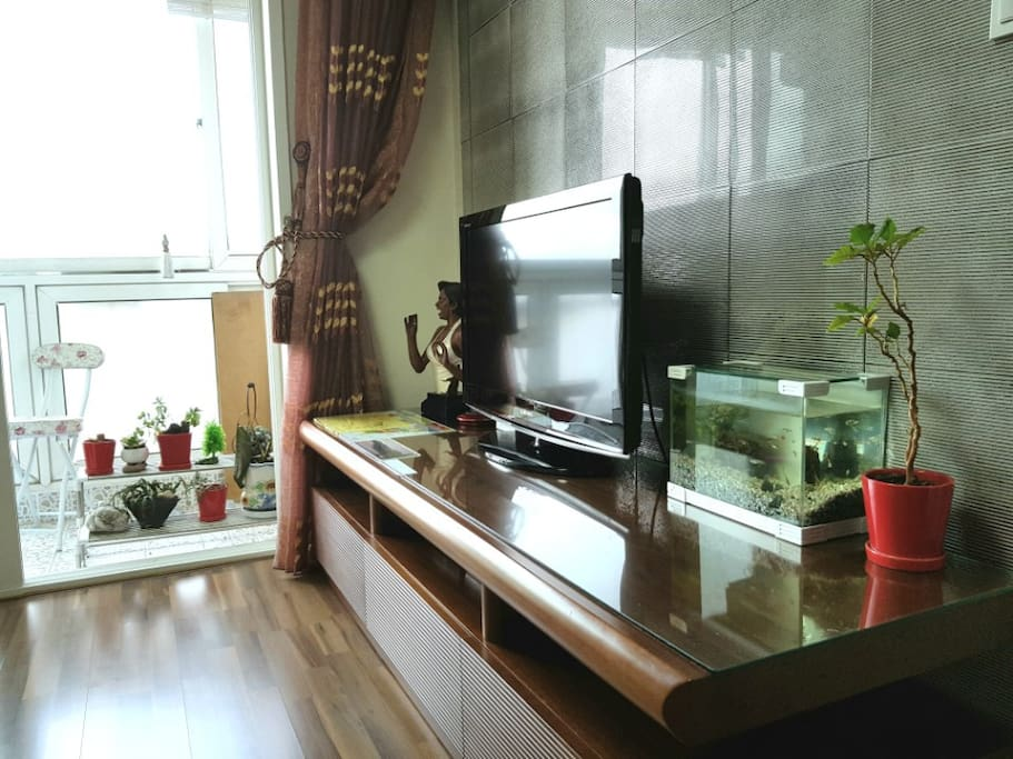 Living room with TV and fish tank