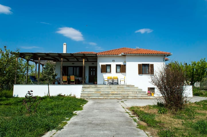 A great family house near the sea - Agios Minas - House