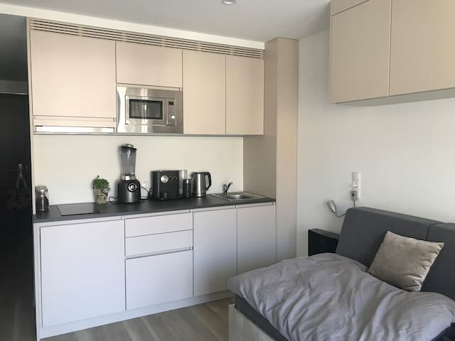 Luxurious Apartment in Central Stuttgart