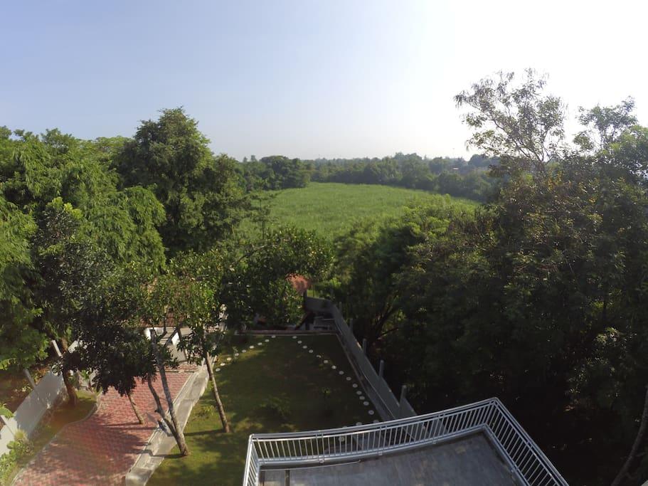 view dari rooftop