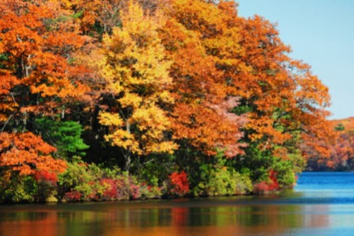Fall is beautiful on the lake!