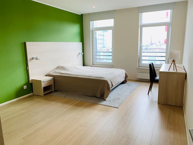 Stylish 1 bedroom apartments near Petrogradskaya